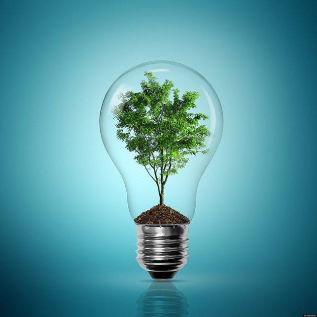 earth-friendly eco-friendly