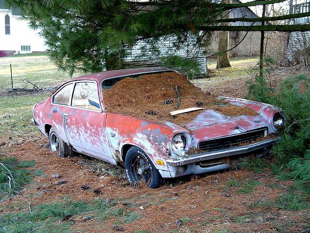 1972 Chevy Vega