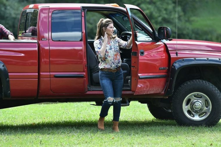 Shania Twain Trading Paint Preview