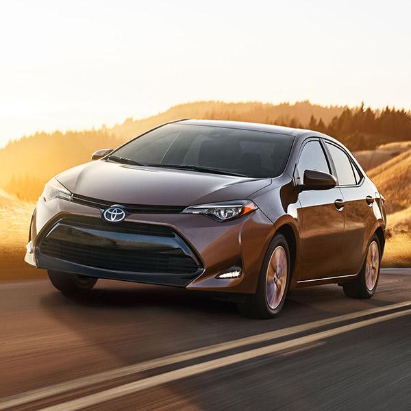 2019 Toyota Corolla Overview