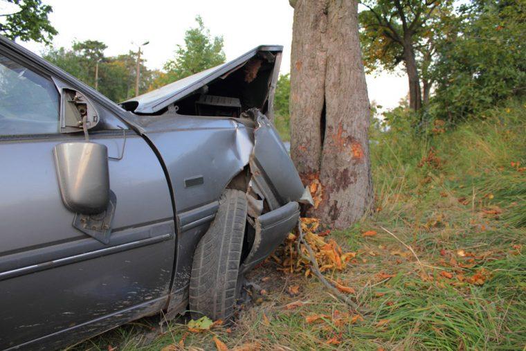 car accident crash tree damage