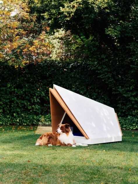 Ford kennel