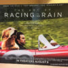 The Art of Racing in the Rain Trailer poster theater Golden Retriever Dog movie Ferrari 250 Testa Rosa