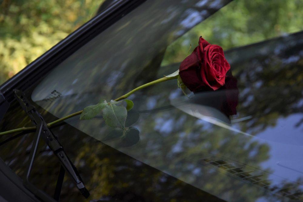 car windshield auto glass