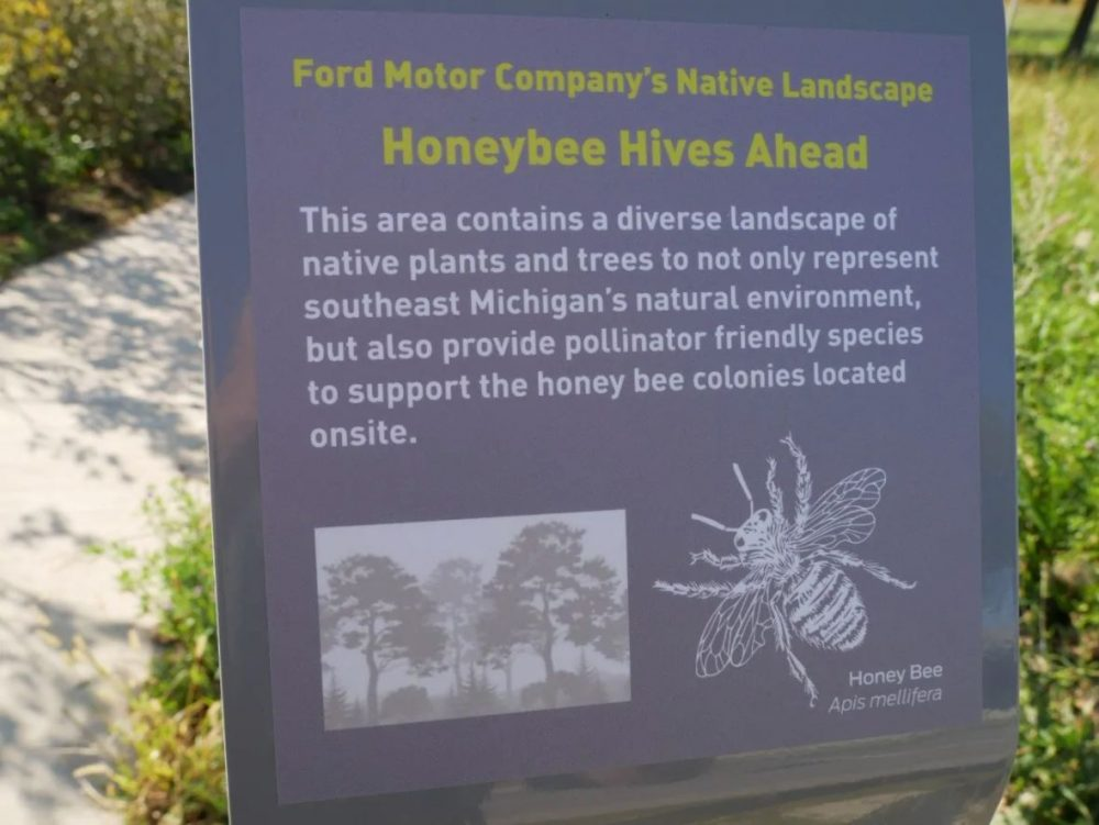 Ford Honeybee WHQ Campus Colonies