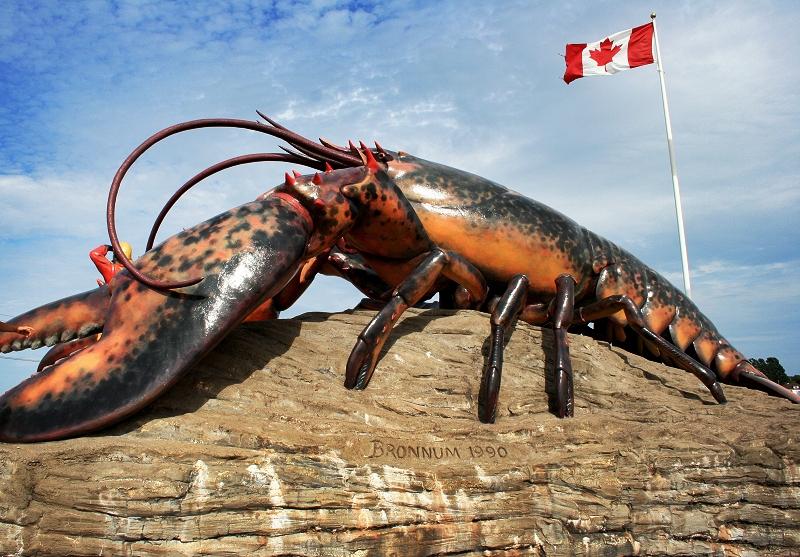 world's largest lobster new brunswick canada
