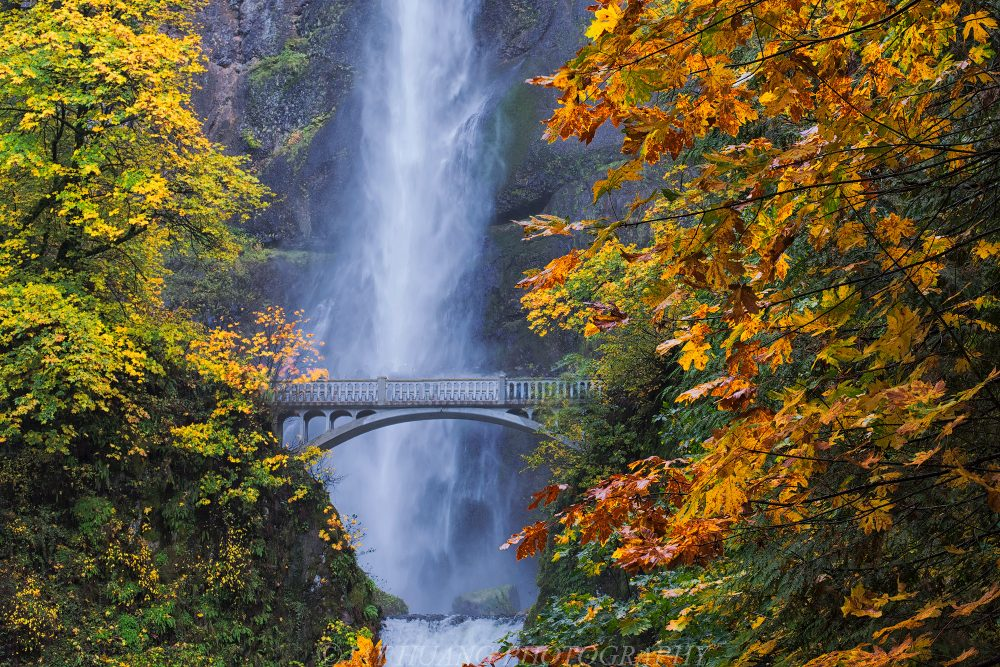 Columbia River Gorge, Oregon, in the fall