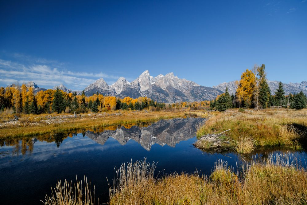 Jackson, Wyoming, in the fall, with the Grand Teton mountain range in the background